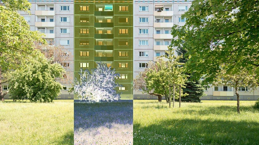 PIC30-DD-RND-9576.jpg